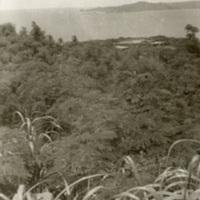 View from Battery Wheeler on Corregidor.